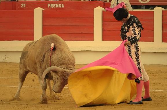bullfighting spain